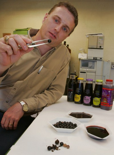 Brazilian berry destroys cancer cells in lab, UF study ...